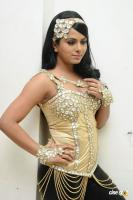 Rachana Maurya New Hot Stills (12)