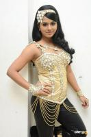 Rachana Maurya New Hot Stills (15)
