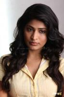 Vijayalakshmi Actress Stills (2)