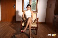 Vijayalakshmi Actress Stills (7)