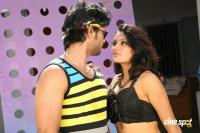 Pranaya Veedhullo Telugu Movie Photos