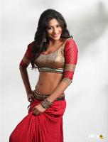 Vijayalakshmi Actress Photoshoot (12)