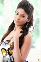 Vijayalakshmi Actress Photoshoot (7)