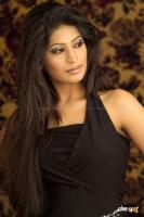 Vijayalakshmi Actress Photoshoot (9)
