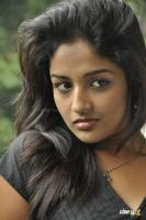 Amitha Rao Photos (16)