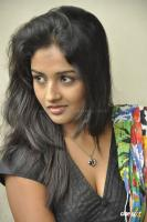 Amitha Rao Photos (23)