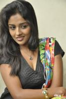 Amitha Rao Photos (28)