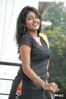 Amitha Rao Photos (41)