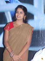 Madurai Theni Audio Launch Photos (4)