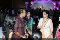 Samvrutha sunil reception photos (74)