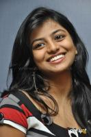 Rakshita New Stills (1)