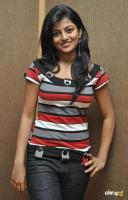 Rakshita New Stills (10)