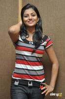 Rakshita New Stills (11)