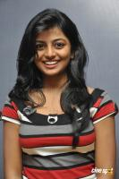 Rakshita New Stills (3)