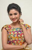 Vishnu Priya Telugu Actress Photos