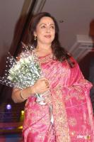 Hemamalini  Actress Photos (2)