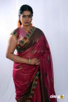 Jayavani Hot Photos (25)