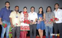 Punnami Ratri Movie Audio Launch Photos