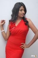 Amita Rao Latest Stills (38)