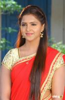Sanchita Padukone South Actress New Photos Gallery