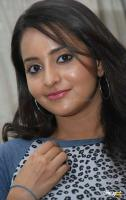 Bhama in Burfi Press Meet (6)