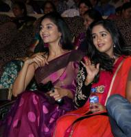 Intinta Annamayya Audio Release Photos (16)