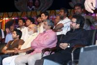 Intinta Annamayya Audio Release Photos (25)