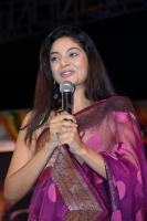 Intinta Annamayya Audio Release Photos (29)
