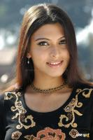 Actress Bhargavi Stills (11)