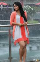Anushka in Mirchi Movie Stills (6)