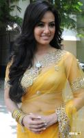 Sana Khan at Nadigayin Diary Audio Launch (12)