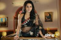Rachana Maurya Hot Saree Stills (6)