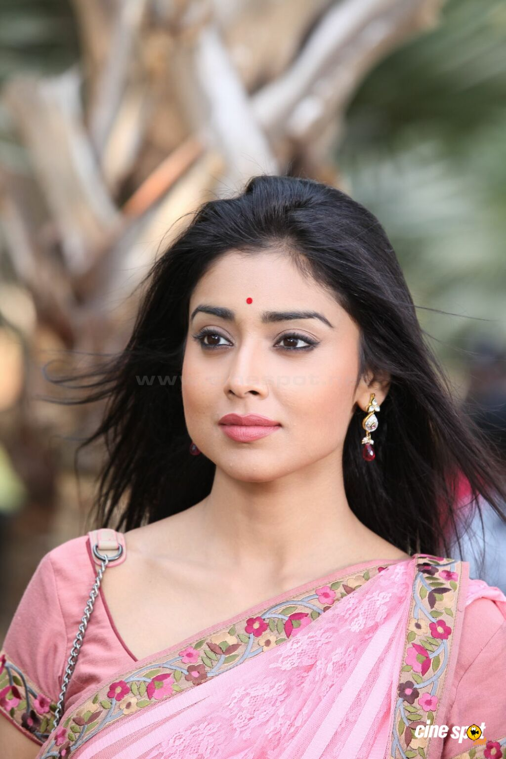 shriya saran songs