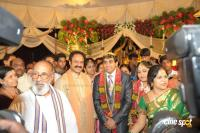 Kodandarami reddy Daughter marriage Event, Photos, Stills