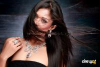 Shreya Hot Photos (11)