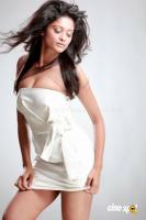 Shreya Hot Photos (12)