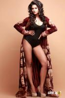 Shreya Hot Photos (4)