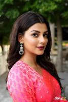 Anisha Ambrose Actress Photos
