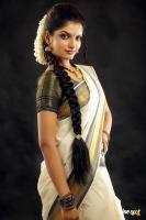 Sruthi Nair Saree Photos (1)