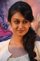 Aishwarya Arjun at Pattathu Yaanai Audio Launch (9)