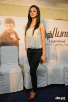 Aishwarya Arjun at Pattathu Yanai Press Meet (12)