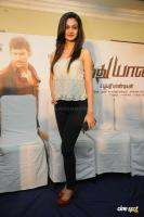 Aishwarya Arjun at Pattathu Yanai Press Meet (14)