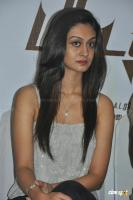 Aishwarya Arjun at Pattathu Yanai Press Meet (8)