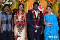 Kottai Perumal Son Wedding Reception Stills (12)