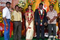 Kottai Perumal Son Wedding Reception Stills (14)