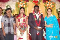 Kottai Perumal Son Wedding Reception Stills (28)