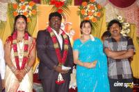 Kottai Perumal Son Wedding Reception Stills (29)