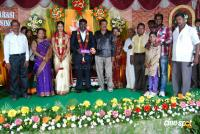 Kottai Perumal Son Wedding Reception Stills (6)