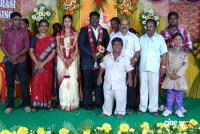 Kottai Perumal Son Wedding Reception Stills (9)
