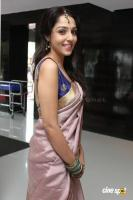 Lekha Washington at Kalyana Samayal Saadham Audio Launch (7)